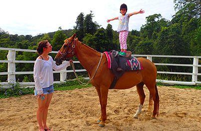 horse_img